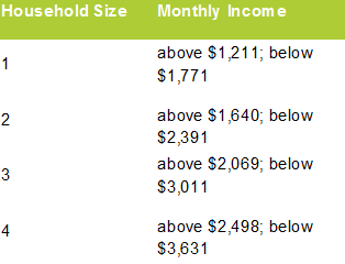 Gross Monthly Income by Household Size