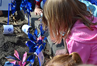 Girl planting a pinwheel at the Capitol during the pinwheels for prevention event